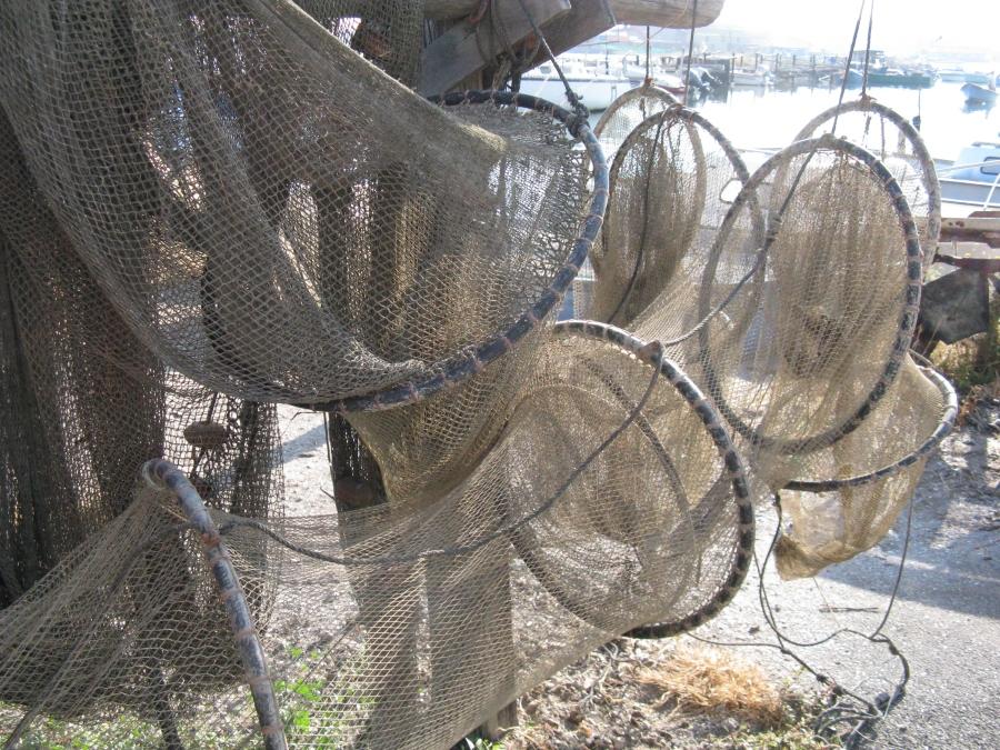 travers des pêcheurs, Pointe courte